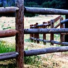 Boundaries...Ketchum, Idaho by Diane Arndt
