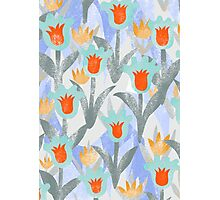 Fluffy Tulips Photographic Print
