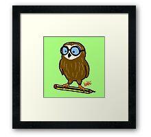 Wise old owl Framed Print