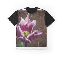 White edges on purple Tulip at Tesselaar Victoria Australia 20160923 7601 Graphic T-Shirt