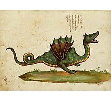 Vintage Dragon Photographic Print