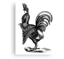 Victorian chicken lady Canvas Print