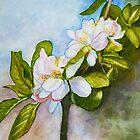 Apple Tree Flowers Watercolour Painting by Dai Wynn