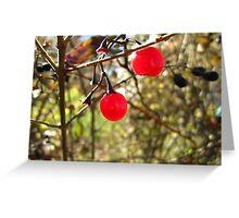 Autumn Beads Greeting Card