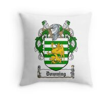 Downing (Dublin) Throw Pillow