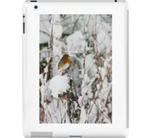 Robin red breast winter design for Christmas  iPad Case/Skin