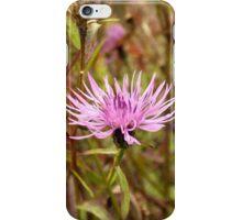 Thistle iPhone Case/Skin