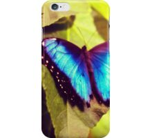 Peleides Blue Morpho iPhone Case/Skin