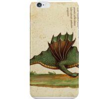 Vintage Dragon iPhone Case/Skin