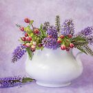 Berries and Hebe by Ellesscee