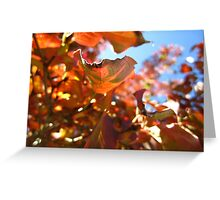 Autumn Leaves I Greeting Card