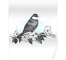 Bird on cherry blossoms Poster