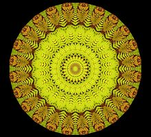 Fern Mandala by Michael Matthews