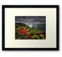 Under Controll ~ Oregon High Cascades ~ Framed Print