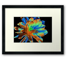 ~The Painted Queen of the Night~ Framed Print