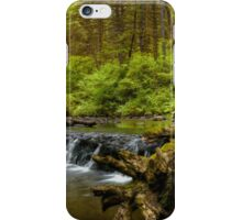 I Got Stumped ~ Oregon Cascades ~ iPhone Case/Skin
