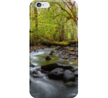 Let It Flow ~ Whittaker Creek ~ iPhone Case/Skin