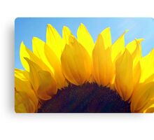~sunshine~ Canvas Print