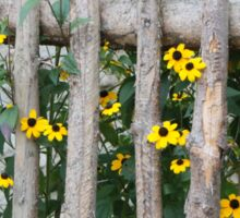 Fence with yellow flowers Sticker