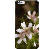 Small and Sweet iPhone Case/Skin