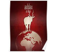 Addax/white antelope - endangered species Poster