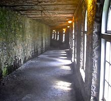 Boldt Castle passageway to the Power House, 1000 Islands, New York, USA by Shulie1