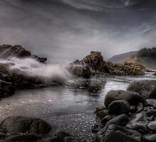 The Big Splash ~ Oregon Coast ~ by Charles & Patricia   Harkins ~ Picture Oregon