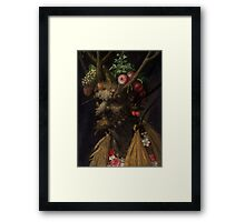 Arcimboldo 4 season in one Framed Print