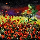 poppies 7741 by calimero