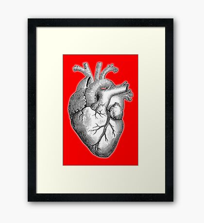 Heart, Anatomical, Drawing, Etching, Framed Print
