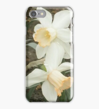 Metroparks Zoo 5 iPhone Case/Skin