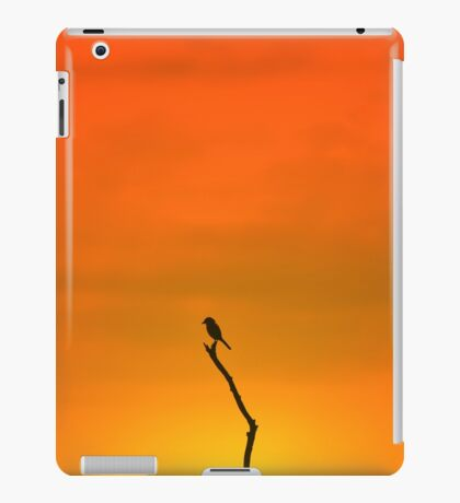 Wild Bird Silhouette - Simplistic Colorful Backgrounds from Nature iPad Case/Skin