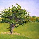Hawthorn by Les Sharpe