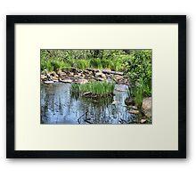 Pond at Belleuve Framed Print