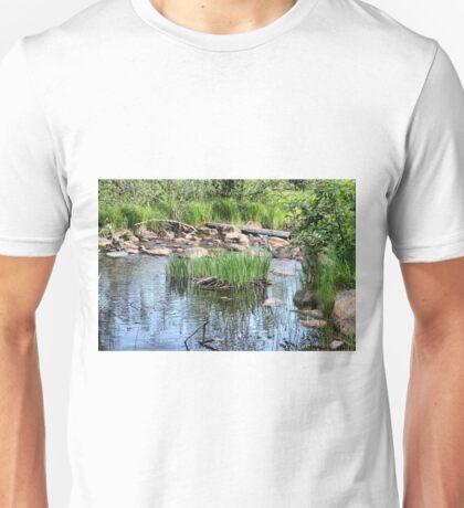 Pond at Belleuve Unisex T-Shirt