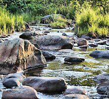 Rocks of Bellevue by Ed Warick