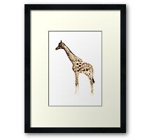 Giraffe Drawing Nursery Illustration Watercolour Painting Image Poster Framed Print