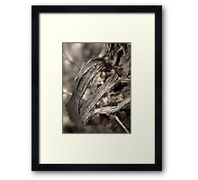 The Ugliness of Nature Framed Print