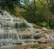 Katoomba Cascades .. framed by trees by Michael Matthews