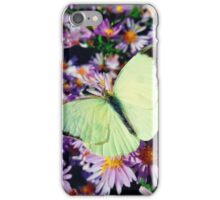 Cabbage butterfly iPhone Case/Skin