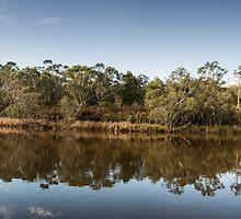 Glenelg River, Victoria by SusanAdey