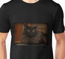 Lion's Den Unisex T-Shirt
