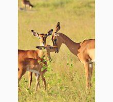 Impala - Motherly Love in Nature Unisex T-Shirt