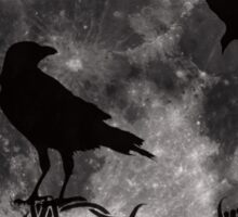 Ravens and Full Moon Sticker
