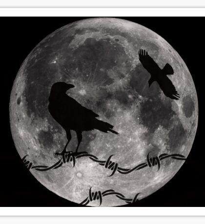 Ravens and Full Moon Sticker