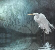 Great Egret in moonlight by Tarrby