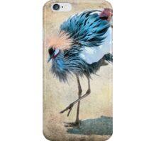 The Dancing Crane iPhone Case/Skin