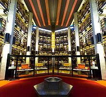 Great Library of Palanthas by John Velocci