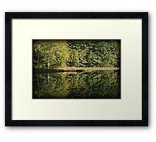 Pickerel Shoreline Reflection Framed Print