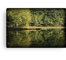 Pickerel Shoreline Reflection Canvas Print
